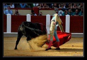 matador2-300x208